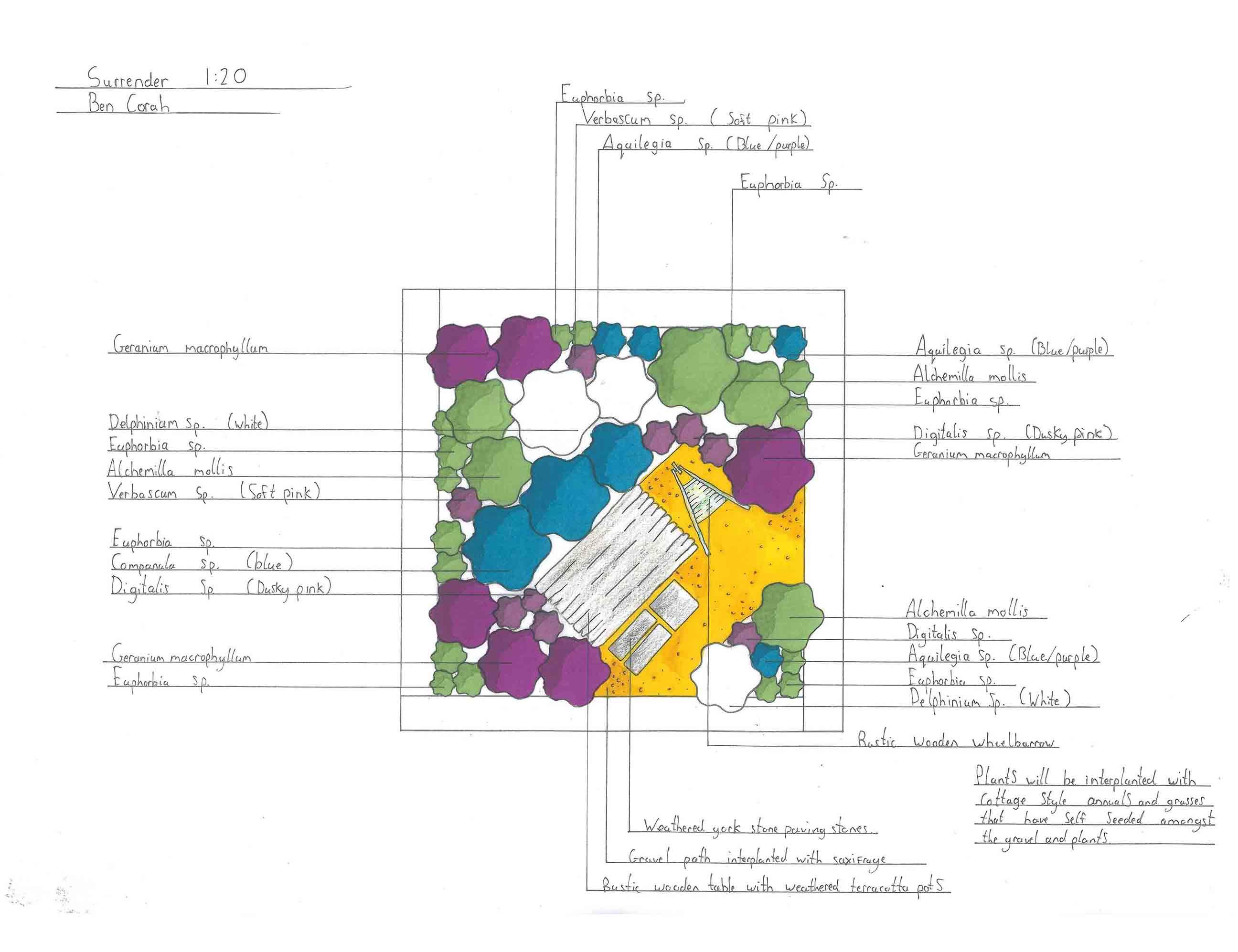 stonetree planting plan
