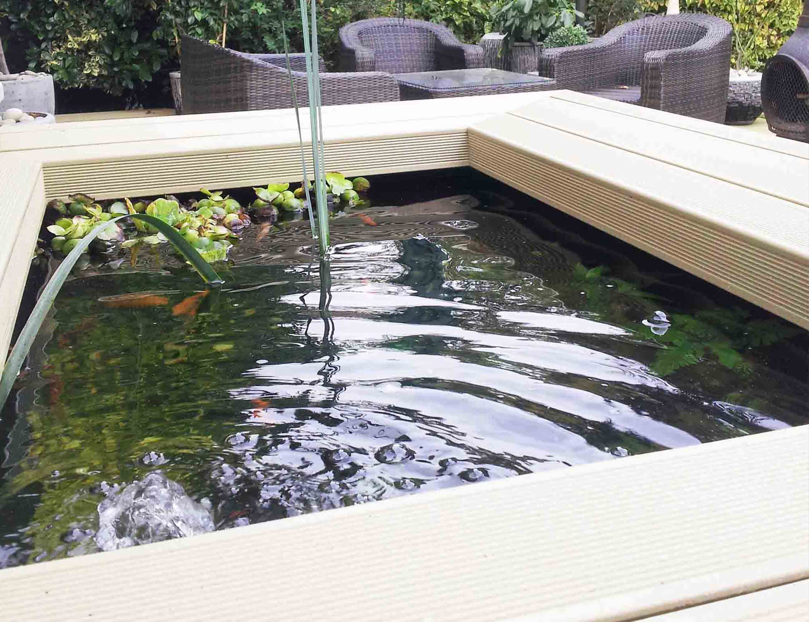 stonetree pond