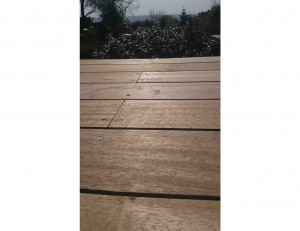 decking made from meranti