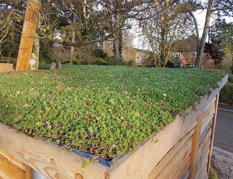 sedum roof installers rutland
